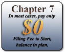 Chapter 7 only $335 to start